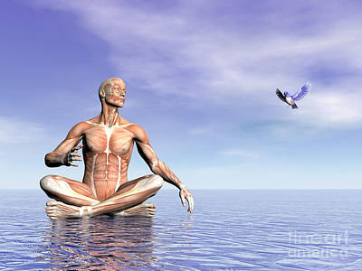 Digital Art - Male Musculature In Lotus Position by Elena Duvernay