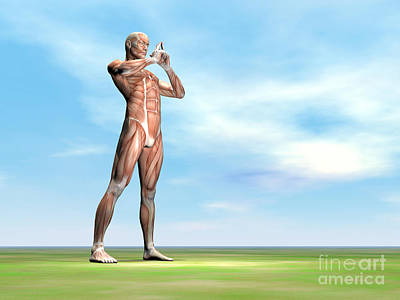 Muscular Digital Art - Male Musculature Standing On The Green by Elena Duvernay