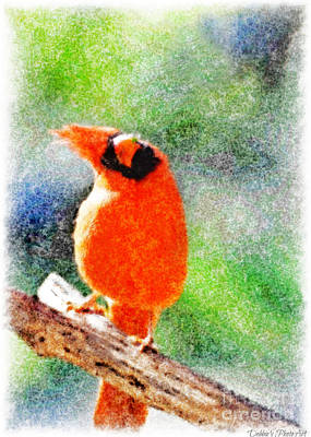 Photograph - Male Northern Cardinal With Leaf In Beak 2 - Digital Paint IIi by Debbie Portwood