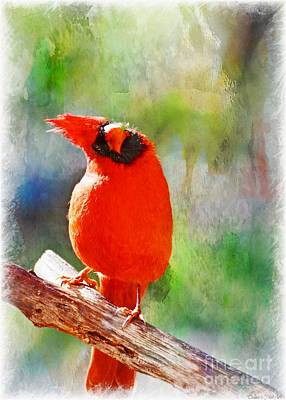 Photograph - Male Northern Cardinal With Leaf In Beak 2 - Digital Paint Iv by Debbie Portwood
