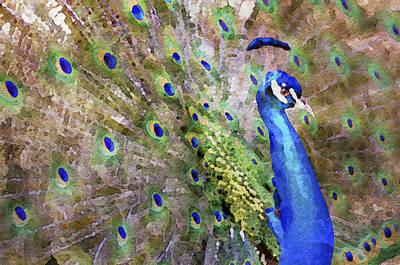 Digital Art - Male Peacock  by Patrick M Lynch