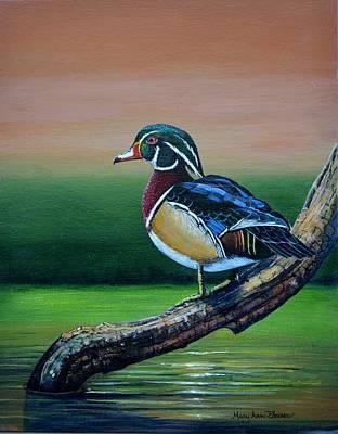 Male Wood Duck Art Print by Mary ann Blosser