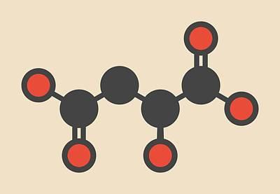 Malic Acid Fruit Acid Molecule Art Print by Molekuul