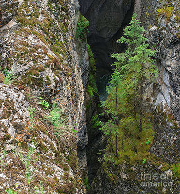 Photograph - Maligne Canyon by Charles Kozierok