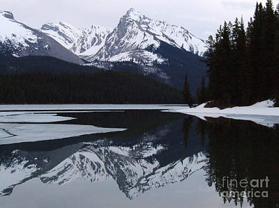 Photograph - Maligne Lake - Icy Reflections by Phil Banks