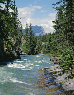 Photograph - 1m3920-maligne River by Ed  Cooper Photography