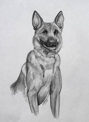 Police Dog Drawing - Malinois by Lorah Buchanan