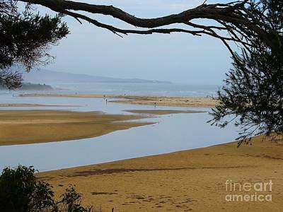 Photograph - Mallacoota Inlet by Michele Penner