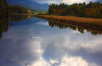 Art Print featuring the photograph Mallard Duck On Lake In Adirondack Mountains In Autumn by Jerry Cowart