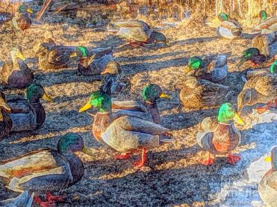Digital Art - Mallard Ducks Feeding 20150121 by Julie Knapp