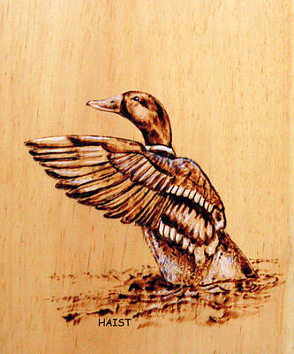 Pyrography - Mallard by Ron Haist