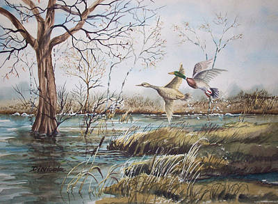 Waterfowl Painting - Mallard Takeoff by Anthony DiNicola
