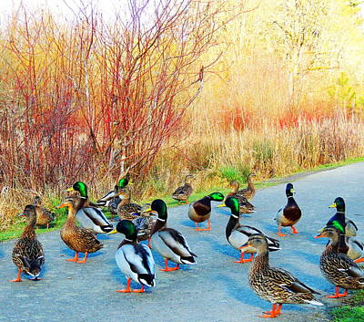 Art Print featuring the photograph Mallards In The Park by Karen Horn