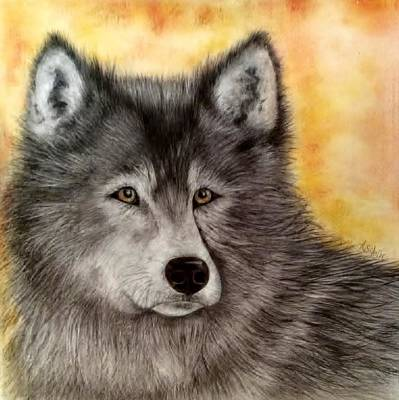 Painting - Mama Wolf by Annamarie Sidella-Felts