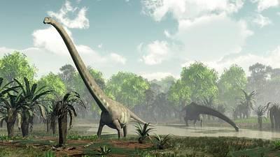 Paleobotany Photograph - Mamenchisaurus Dinosaurs by Walter Myers