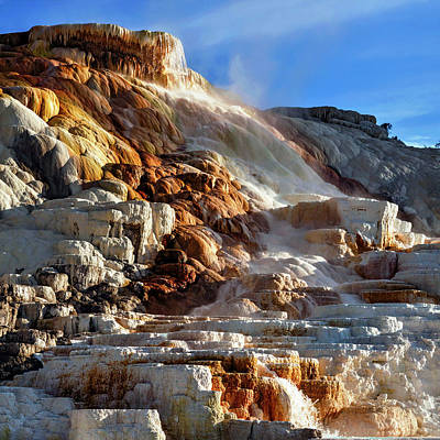 Mammoth Hot Springs Photograph - Mammoth Hot Springs by Babak Tafreshi