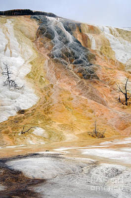 Photograph - Mammoth Hot Springs - Yellowstone by Cindy Murphy -NightVisions