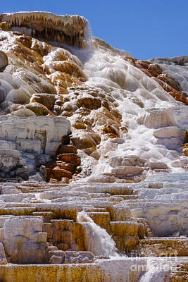 Photograph - Mammoth Hot Springs by Jennifer White