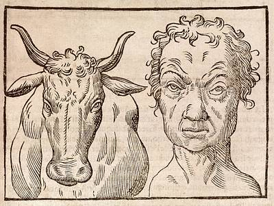 Man And Bull's Head Print by Middle Temple Library