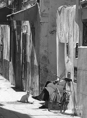 Photograph - Man And Cat - Morocco by Louise Fahy