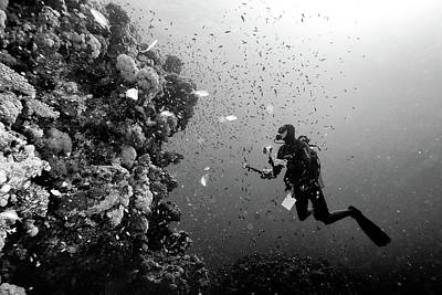 Scuba Photograph - Man At Work by Marcel Rebro