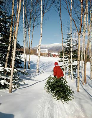 Man Dragging In Christmas Tree Art Print