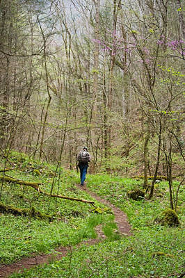 Photograph - Man Hiking In The Smoky Mountains by Melinda Fawver