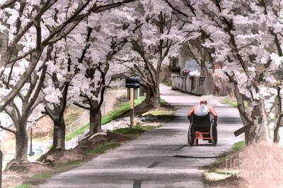 Man In Wheelchair Under Cherry Blossoms Art Print by Dan Friend