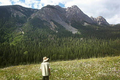 Photograph - Man Standing In A Field Of Daisies In The Mountains by Sandra Cunningham