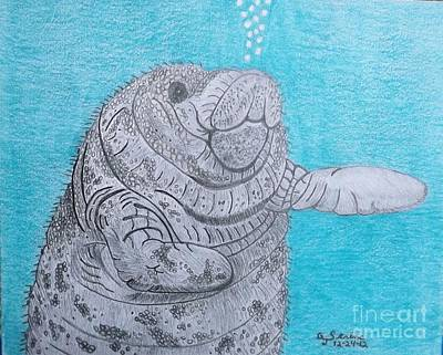 Drawing - Manatee Close Encounter by Gerald Strine