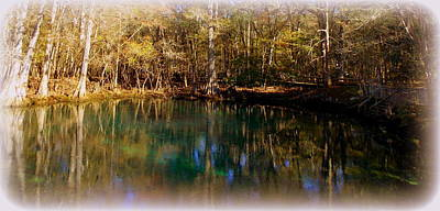 Photograph - Manatee Springs Panoramic 1 by Sheri McLeroy