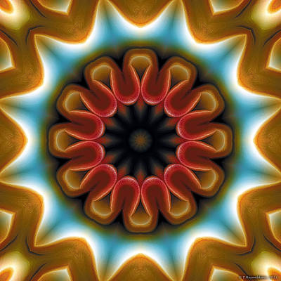 Circle Art Digital Art - Mandala 100 by Terry Reynoldson