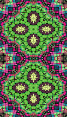 Sacred Geometry Digital Art - Mandala 112 For Iphone Double by Terry Reynoldson