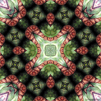 Sacred Digital Art - Mandala 113 by Terry Reynoldson