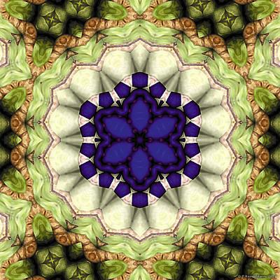 Healing Art Digital Art - Mandala 114 by Terry Reynoldson