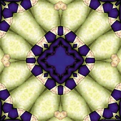 Healing Digital Art - Mandala 118 by Terry Reynoldson