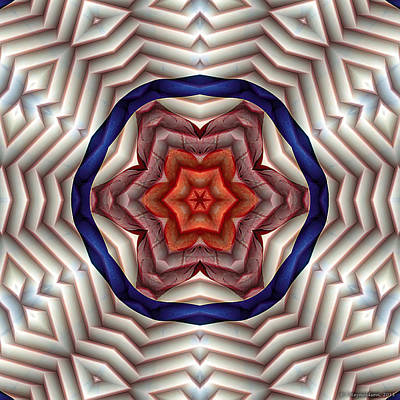 Sacred Art Digital Art - Mandala 12 by Terry Reynoldson
