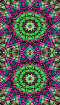 Cosmos Digital Art - Mandala 29 For Iphone Double by Terry Reynoldson