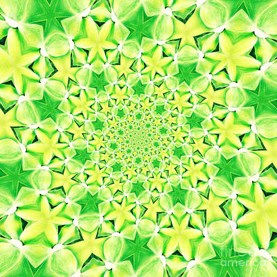 Mandala Photograph - Mandala 3 by Neil Overy