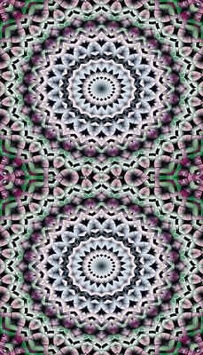 Mathematical Digital Art - Mandala 40 For Iphone Double by Terry Reynoldson