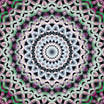 Mandala 40 Art Print by Terry Reynoldson