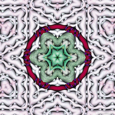 Art Print featuring the photograph Mandala 7 by Terry Reynoldson