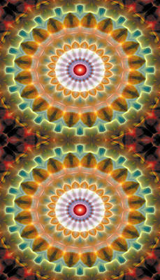 Mandala 87 For Iphone Double Art Print by Terry Reynoldson