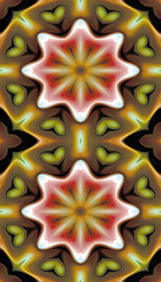 Metaphysical Digital Art - Mandala 93 For Iphone Double by Terry Reynoldson