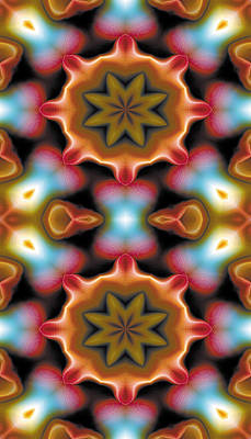 Mandala 94 For Iphone Double Art Print by Terry Reynoldson