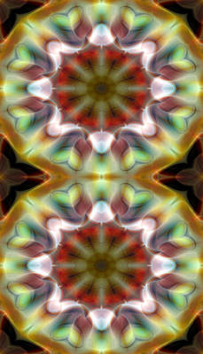 Metaphysical Digital Art - Mandala 97 For Iphone Double by Terry Reynoldson