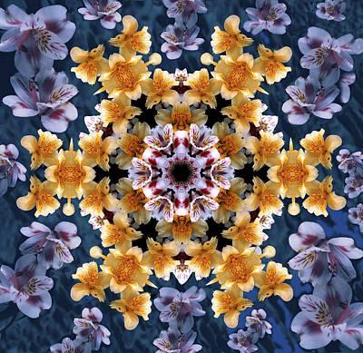 Digital Art - Mandala Alstro by Nancy Griswold