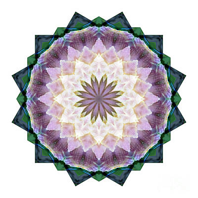 Digital Art - Mandala - Hagi Healing Layers by Kathi Shotwell