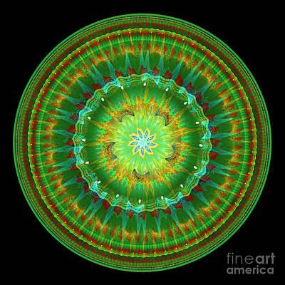 Digital Art - Mandala Of Life by Martin Capek