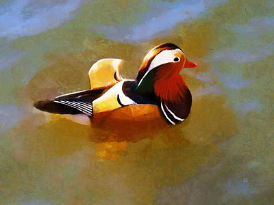 Painting - Mandarin Duck Flapping In The Water by Menega Sabidussi